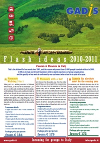 Flash Ideas 2010-2011